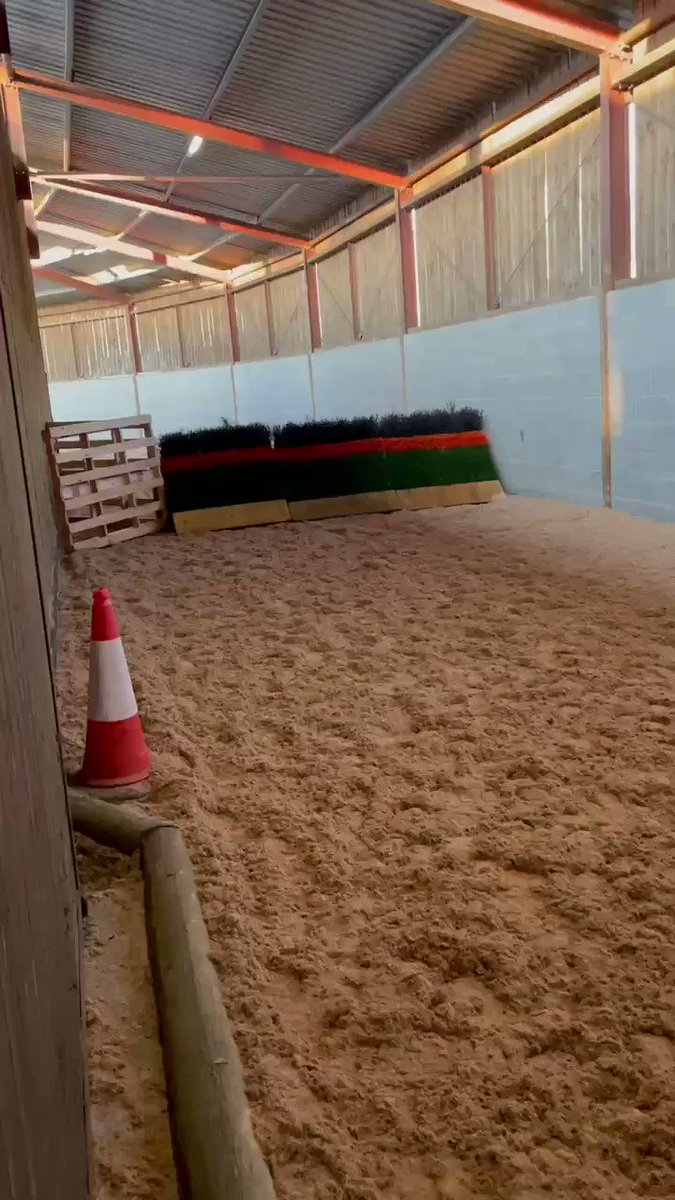 My jumping string schooling this morning. Roll on Cheltenham 🤭