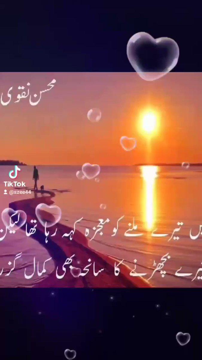 #MohsinNaqvi #poetry #sad #mohsinnaqvi #shairy #shair #shaheenafridi #WomensDay