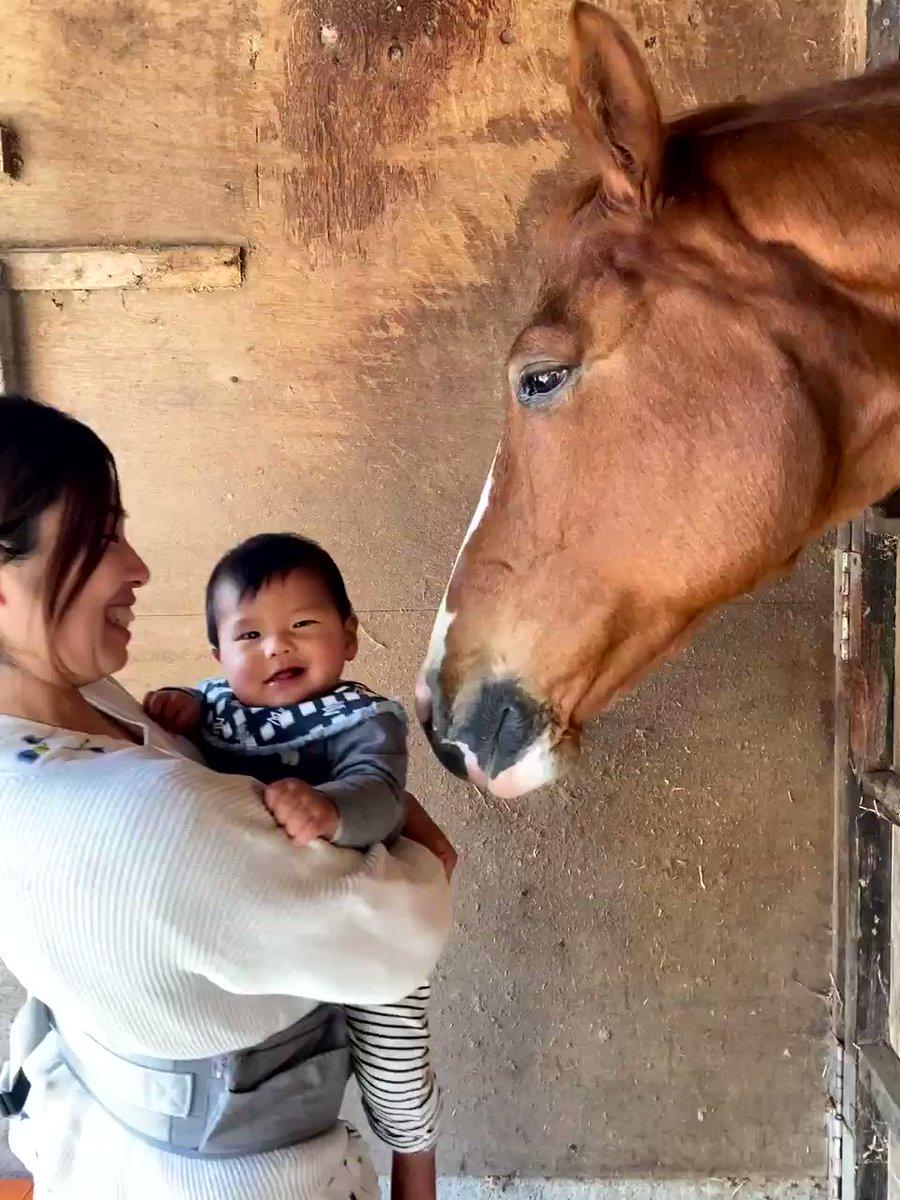 赤ちゃんには馬も優しくなれる!最後は一緒のポーズでほのぼの・満面の笑みがかわいい