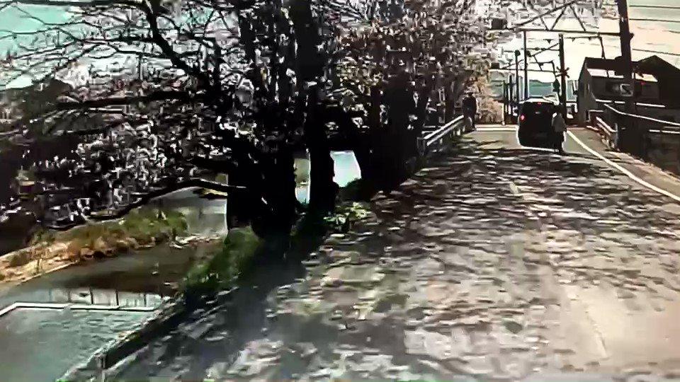 筑肥線が遅れた原因!踏切内に侵入した車と電車の衝突がドライブレコーダーに撮れていた!
