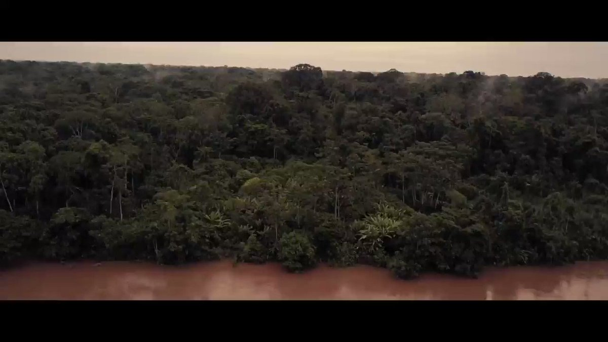 "Our new song ""Amazonia"" is available now! Proceeds from the song will benefit The Articulation of Indigenous Peoples of Brazil (APIB) who advocate for environmental and cultural rights of indigenous tribes in the Amazon. WATCH HERE: https://t.co/03vdmSwYI0 https://t.co/6Hix2JsXmG"
