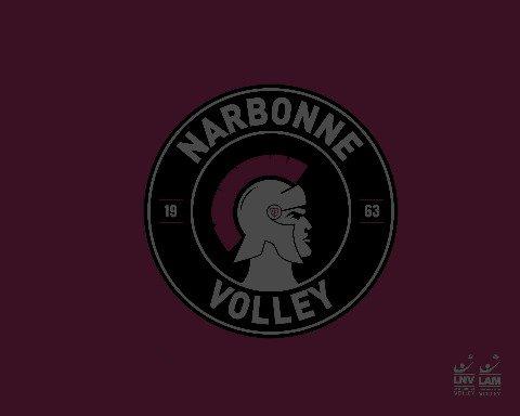 Le Narbonne Volley avait entamé cette nouvelle saison avec l'objectif de créer...