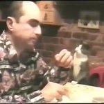 耳が聞こえない飼い主にジェスチャーで伝える猫、賢くて可愛い!