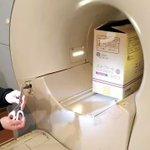 MRIに金属は絶対持ち込み禁止!ハサミが空中を飛んでダンボールに刺さる動画!