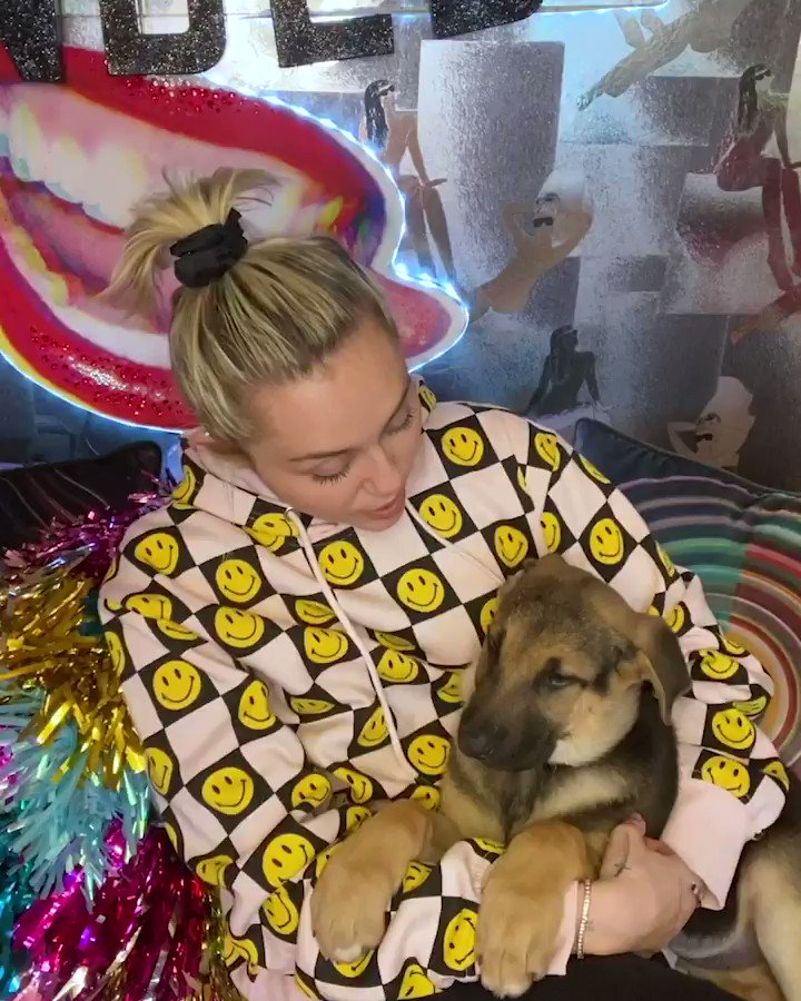 🐶 snuggles +  @MileyCyrus + words of wisdom = 🙌 💯💫  Our #TakeABreak series featuring some your favorite faces is nominated for @TheWebbyAwards ✨   You can vote and show some love: https://t.co/NRNr20WNMP https://t.co/IyhdMBYt85