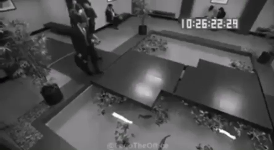 Reminder that the full video of michael scott falling into a koi pond exists https://t.co/mgNN8Am9XS
