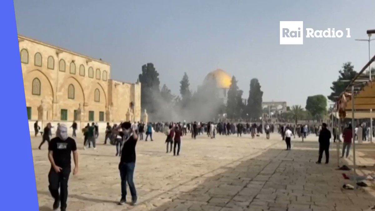 🔵Secondo la #MezzalunaRossa sono 175 i #palestinesi feriti nel corso degli scontri con la polizia israeliana sulla Spianata delle Moschee a #Gerusalemme. Uno è condizioni gravi. 30 le persone colpite da proiettili di gomma esplosi in risposta al lancio di pietre https://t.co/01YMjag8UO