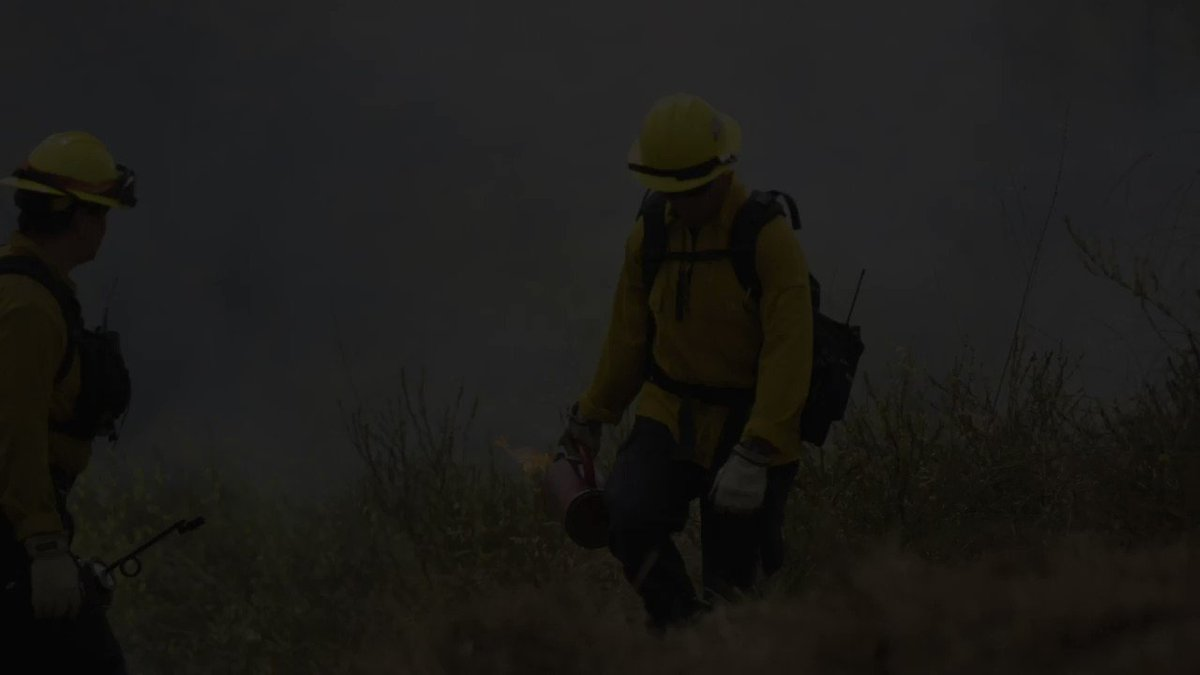 This Thursday and Friday, CPFD will be conducting prescribed burns on the Alpha Shelf for hazard mitigation. Smoke will be visible.  Burns will also be conducted: - May 22-23  - May 30 - June 7-11 https://t.co/z6JM8OUw7d