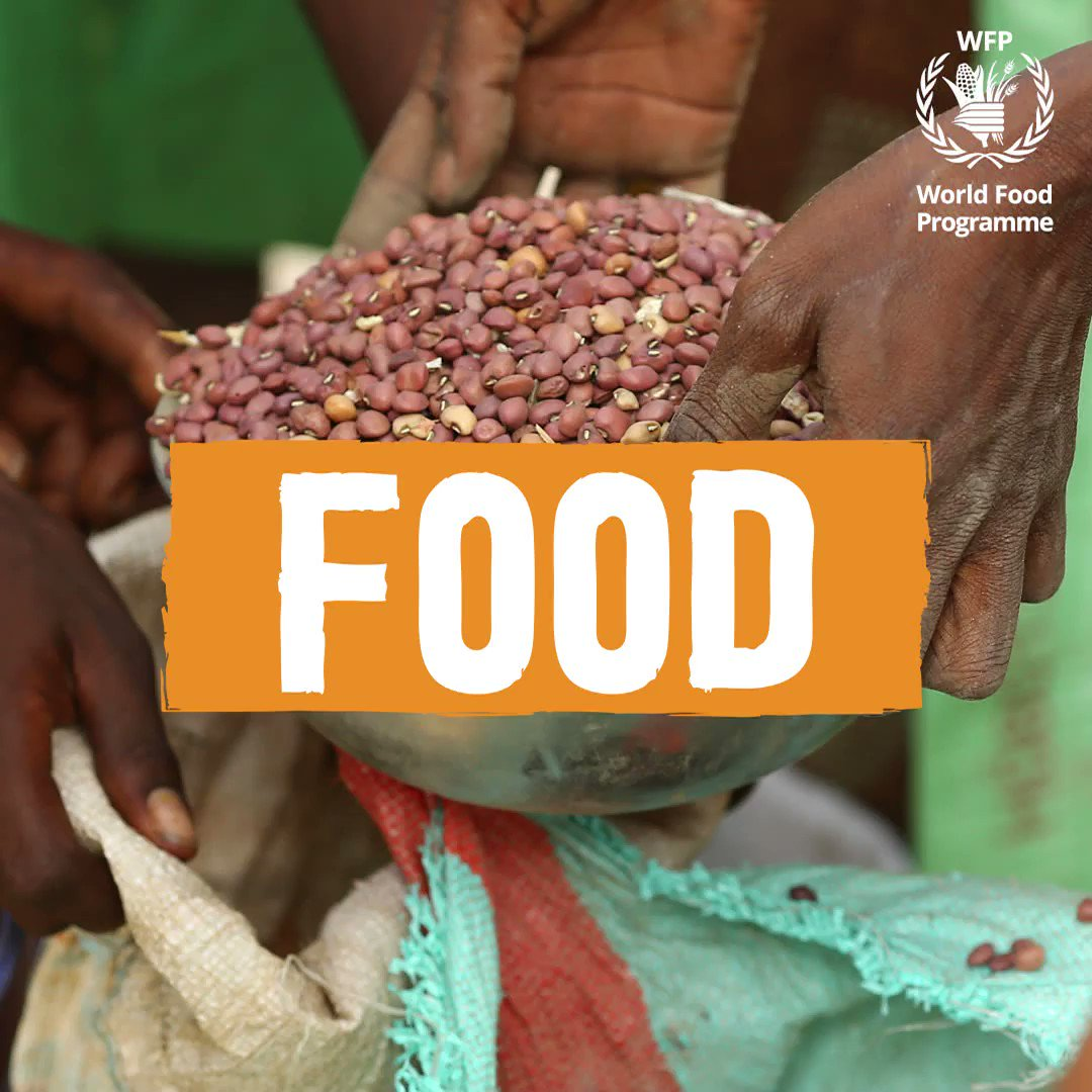 It's #WorldFoodSafetyDay! In collaboration with @WFP, we aim to design and develop more #sustainable packaging to better protect food and maintain its quality to ultimately reduce food waste.