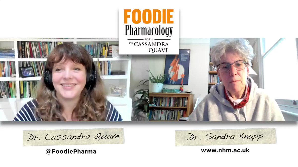 New on #FoodiePharmacology - I speak with Dr. Sandra Knapp @SandyKnapp, an expert on the amazing Solanaceae (nightshade) plant family! We talk about #biodiversity and some cool crops you've probably never heard of before!   Listen: https://t.co/lbqJbVZWLX