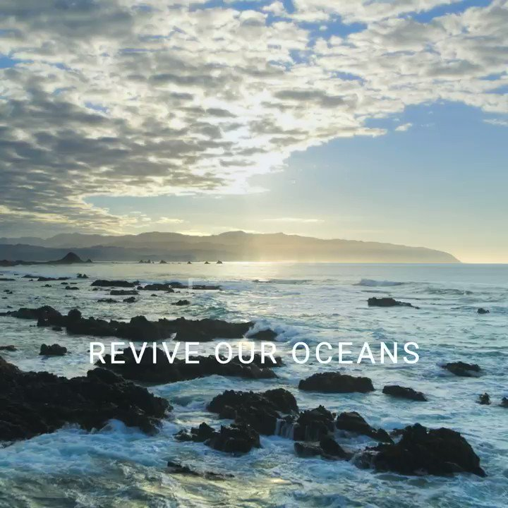 This #worldoceansday, we want to celebrate the beauty of our oceans, but also share why it's so important that we protect and keep them healthy.   Tell us what the oceans mean to you and what you think we should be doing to help #reviveouroceans 🌊 https://t.co/kEBHOGsWOt