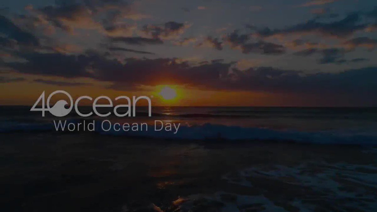 Image for the Tweet beginning: HAPPY WORLD OCEAN DAY 🌊