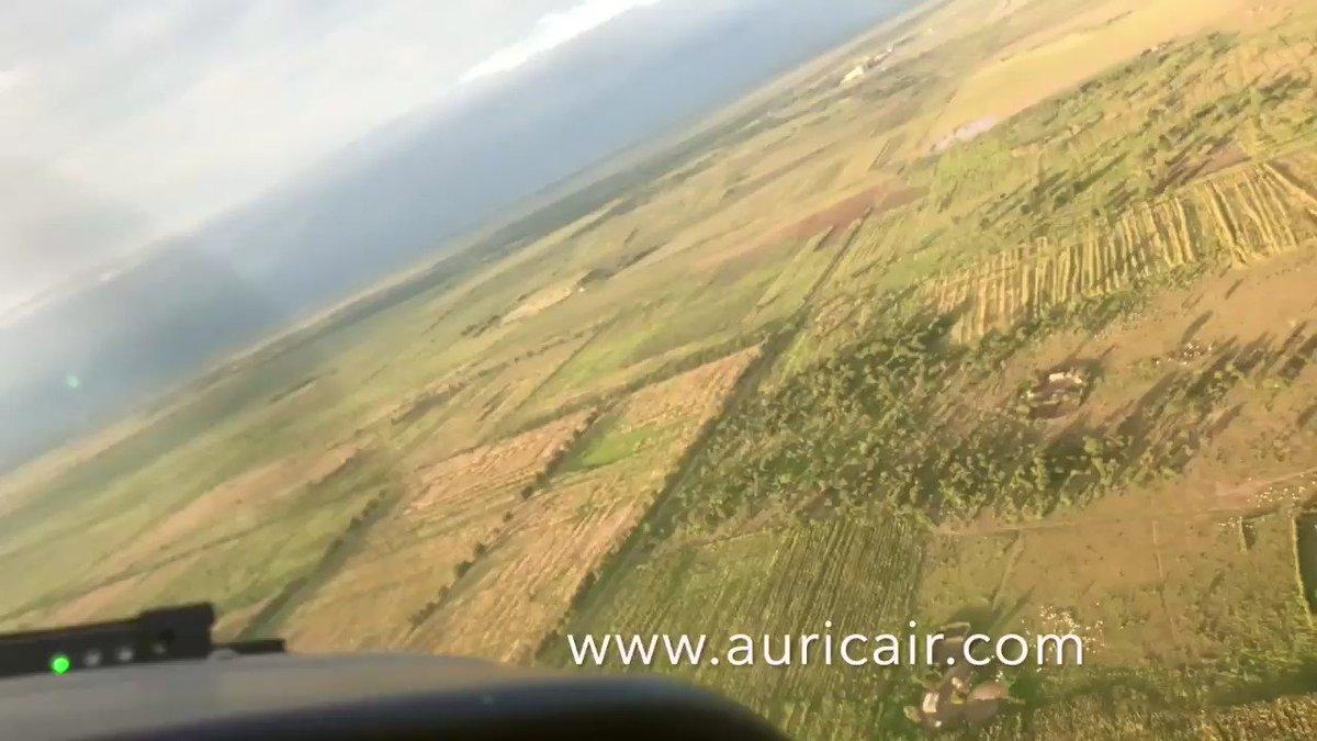 • • • • • #Serengeti #Safari #Seronera #Tanzania #AfricanSafari #SerengetiNationalPark #africansafari #wildlife #elephant #Wildebeest #Kogatende #TheGreatMigration #Marariver #TravelLocal #FlyingSafaris #africa #wildlife #thisisafrica #gamedrive #travel #wildebeest https://t.co/rusJ1FdfLb