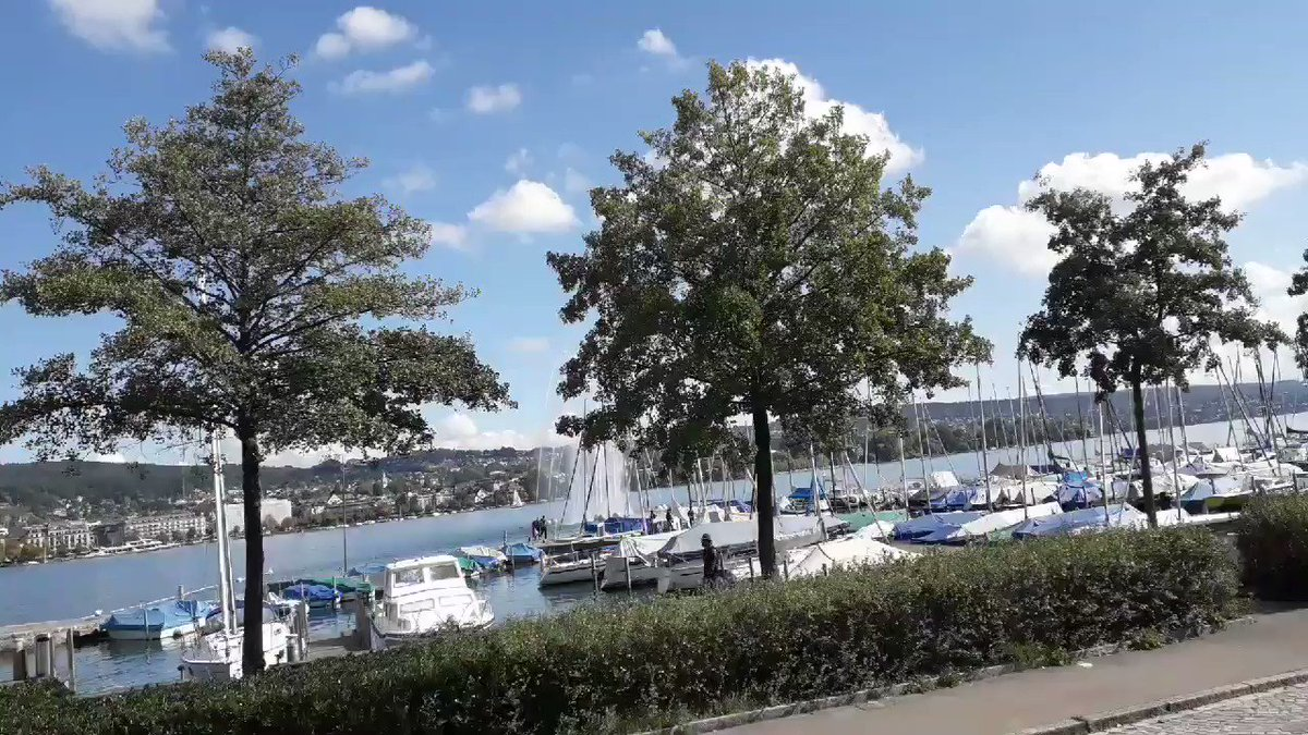 #Europe #Switzerland #Zurich  #Scenery #Amazing #awesome #wow #beautiful #natural #beauty  #heaven #scene #landscapes  #nature #naturelovers #naturephotography #naturelover #naturevideo #TravelDiaries #travelling #vacation #travel  Visited October 2019🙋♂️ Video taken by me 🎥📷📲 https://t.co/E4YIcYdfxp