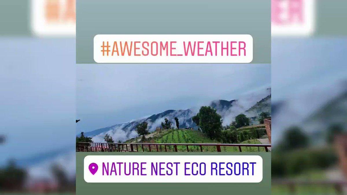 #naturenestecoresort #crocushotels #himalayan  #photography #shimlahills #bestresort #bestresortchail #traveldiaries  #himalayanbikers #himalayas  #holiday #resort #trip #india #himachalpradesh #trekking #weather #weatherphotography #adventure #adventuretravel #adventuretime https://t.co/jGBDO7qkhd