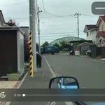 札幌市に出没したクマ、テレビ局の車に煽られ被害が大きくなった?