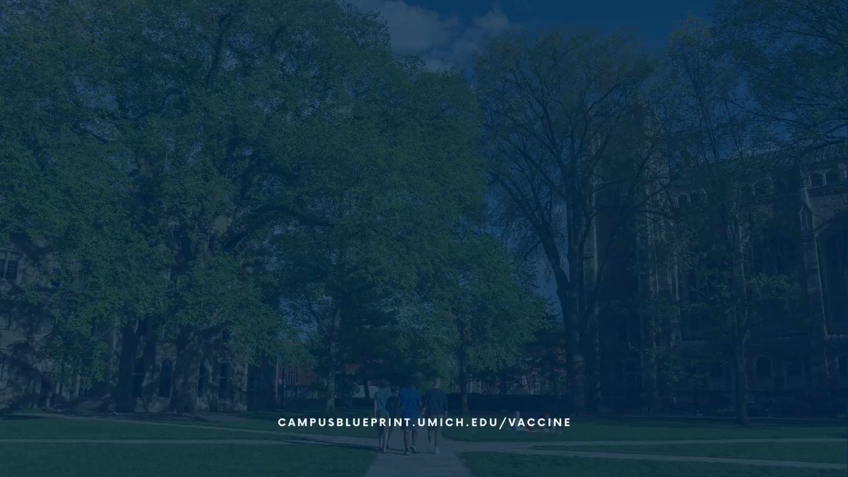 UMichDiversity photo
