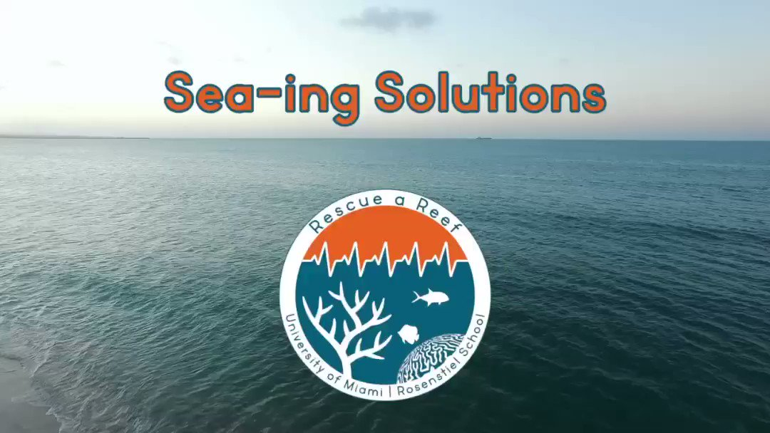 Image for the Tweet beginning: Sea-ing Solutions Part II   In