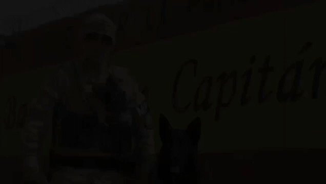 Meet Hulk 🐶, the 🇪🇸 Army @EjercitoTierra bomb-sniffing dog!  This 9⃣-year old German Shepherd has protected @NATO armed forces by serving as an explosive-detection dog indifferent missions like 🇦🇫 or 🇮🇶.  #WeAreNATO 🇪🇦  #MadridOTAN22 🇪🇦  🎥@EMADmde https://t.co/wyjAhC1SIw