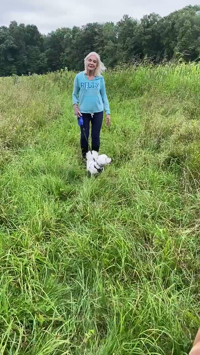 The grass is so tall! 🍃🌿 We've had so much rain, we can't cut or plow the fields 💚🍃 #farm