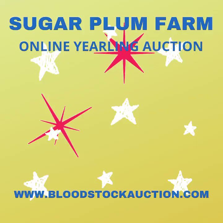 Create a bidding account and be ready to enter your bids ! Don't let that yearling get away. https://t.co/Li3nlGPrdY