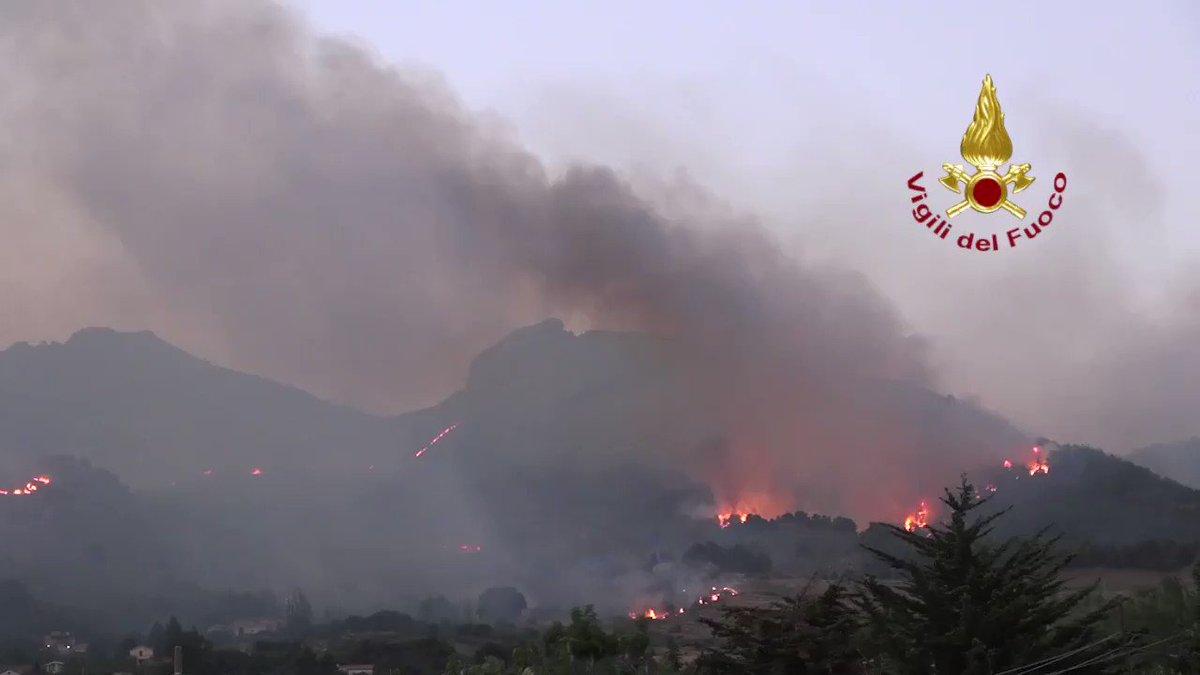 Image for the Tweet beginning: #Incendiboschivi #Palermo, sono proseguite per