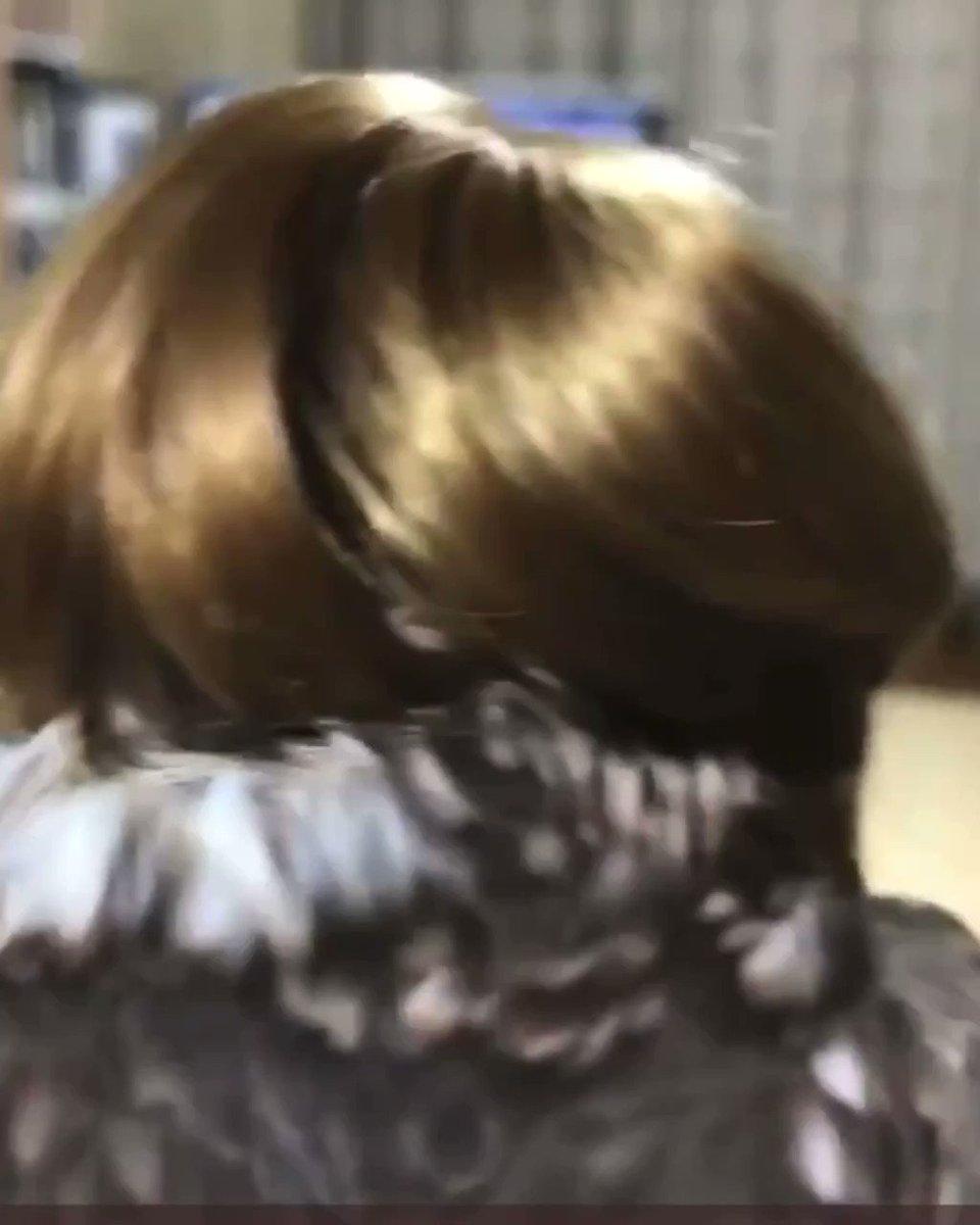 フクロウもヘアースタイルを楽しむ時代に!