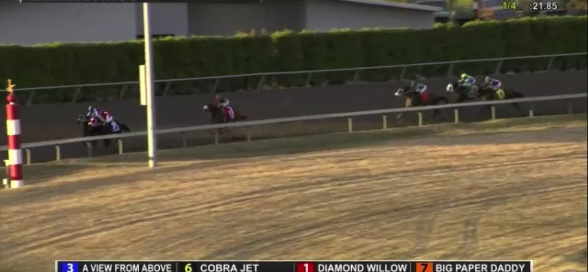 Cobra Jet proved lethal in the $50,000 Washington Cup @EmeraldDowns. The son of Curlin to Mischief @ClimaxStallions is now 3 for 4 w 2 Stakes wins and a Stakes 2nd since the @EclipseTBP private purchase. Congrats to partners,@LucarelliStable & Juan Gutierrez. #BelieveBig https://t.co/mAqkYAPcor