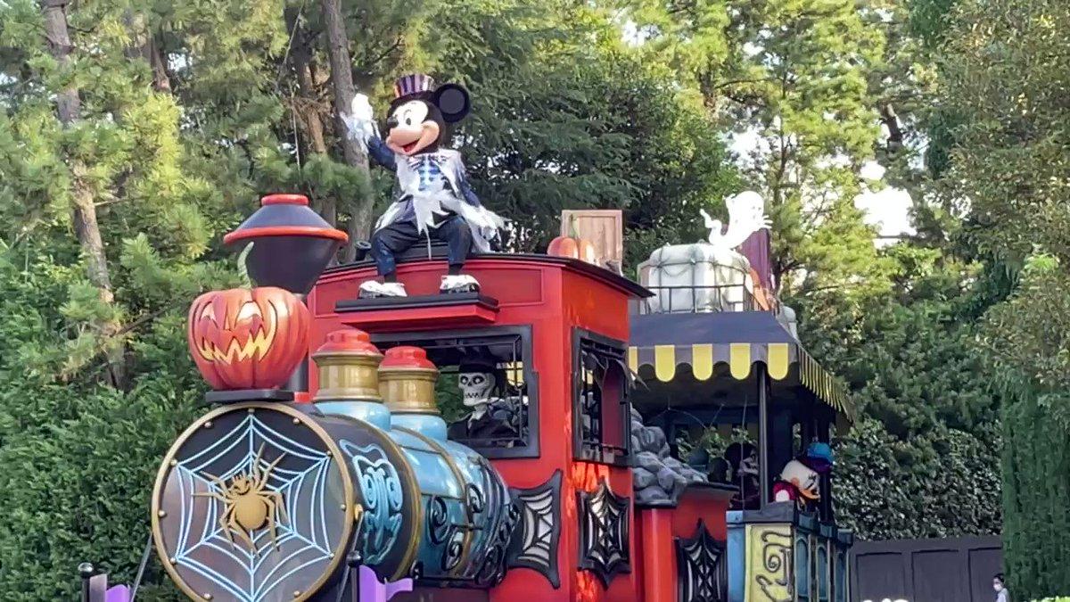 本日〜スタート 期間限定🎃  ミッキー&フレンズのグリーティングパレード:ハロウィンバージョン🎃  ハロウィンの衣装が可愛いですね✨✨ #tdr_now
