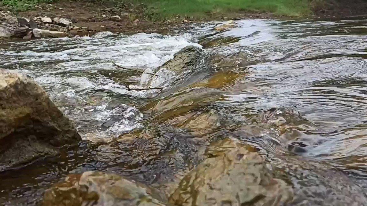 Sound of water 💚💚💚 #soundofwater #PeaceAndLove