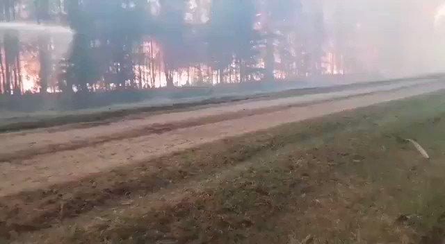 Sibirya'daki orman yangınları, dünyadaki tüm diğer yangınların toplamından daha büyüktü.  Küresel ısınma kaynaklı #iklimkrizi yok öyle mi patron?   #ClimateEmergency #ClimateCrisis #wildfires #COP26 #Sibirya #OrmanYangını