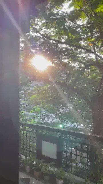 Good Morning Sunshine. https://t.co/zxOlHCjgcx