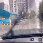こんな兄が欲しい?妹が濡れないよう兄が車まで庇う様子!