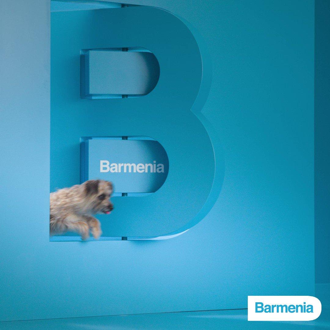 Heute ist #Welthundetag! Egal, ob neues Familienmitglied oder schon länger Teil der Familie: Ihr Hund ist einzigartig - wir versichern ihn auch so. ↗️ https://t.co/WltHXoTV5p  #MachenWirGern #Barmenia https://t.co/YDukqLihie