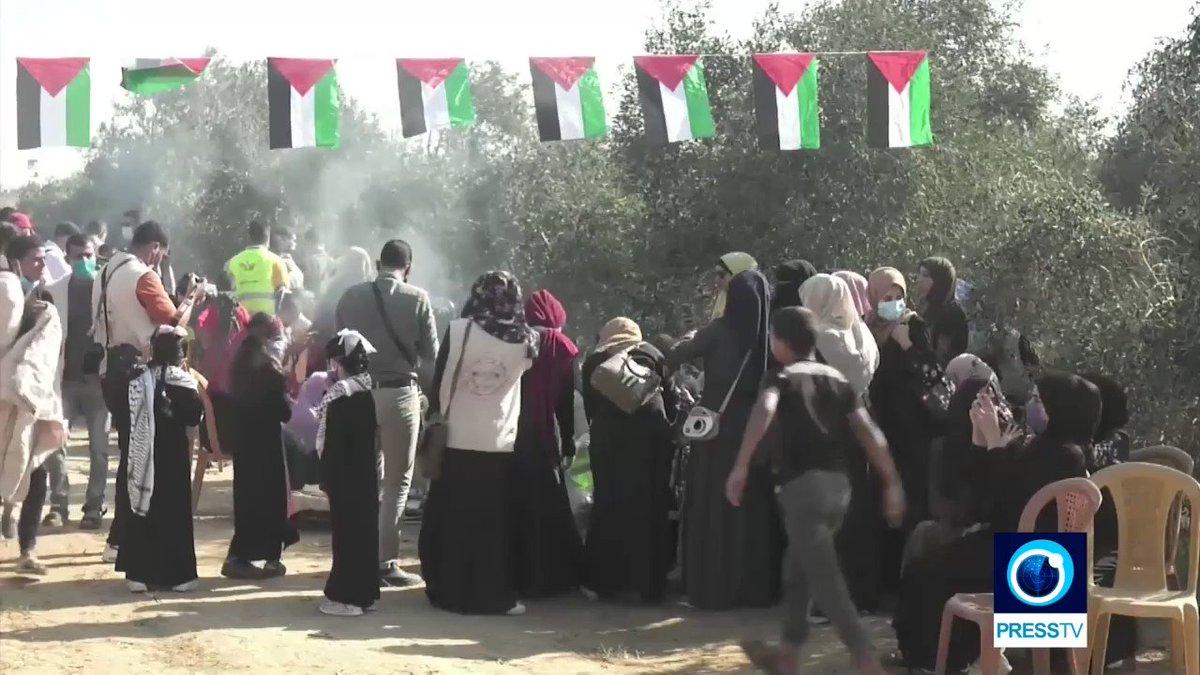 @PressTV's photo on Gaza
