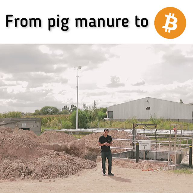 Enough has been said about El Salvador volcanoes 🌋… Let's talk now about how we're enabling #bitcoin mining in farms here in Mexico 🇲🇽 with basically free energy 🐖🐄💩.  This is going to be huge!  #bitcoinmining 👇🏽👇🏽👇🏽