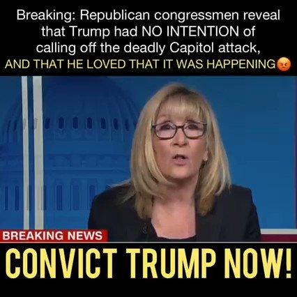 #LockThemAllUp coup Donald Trump jr. Josh Hawley Kevin McCarthy   'Convict Trump now'