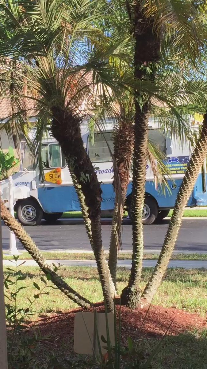 Ice cream truck remix! ????