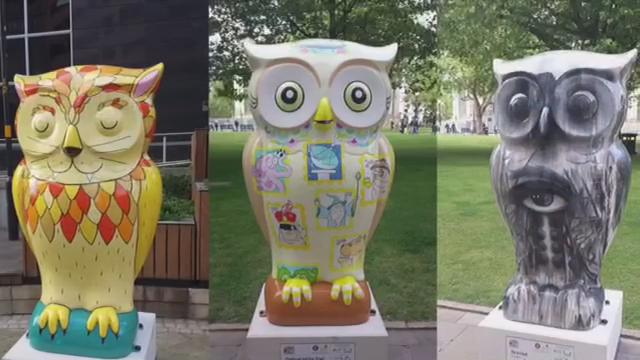 Take up Owl Spotting with The Big Hoot this summer http://t.co/iCRqF66Ulk #bighoot15 http://t.co/9NSWWIX4ok