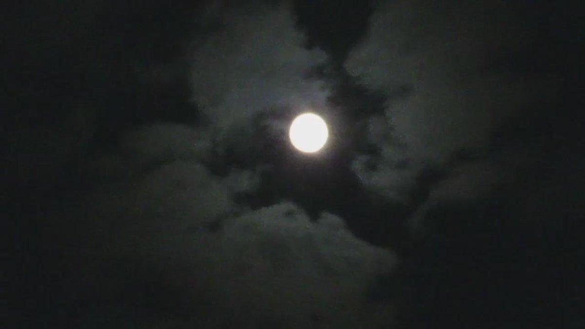 月のクレーターを撮影しようと必死に頑張っていたら、冒頭に銀河系も映ってた(゚д゚) http://t.co/vAL8v5QFr2