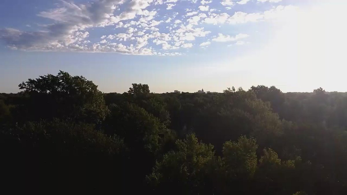 "Mike: ""This is what #topeka looks like from 80 feet."" Trees everywhere. That's the capitol in back #topekatweetalong http://t.co/hkacbuWZXh"