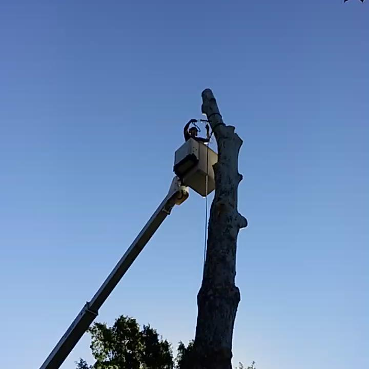 Video: How #forestry crews remove 100+lb limbs. #physics #topekatweetalong http://t.co/1Vu0ybzCIY