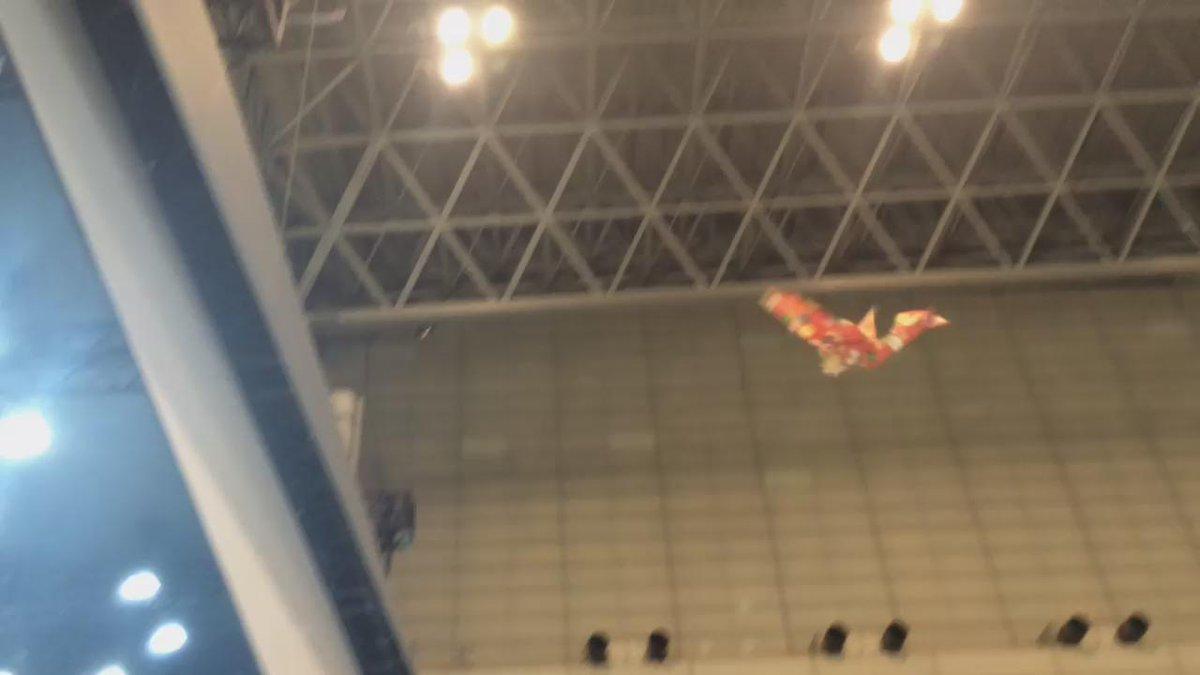 Is it a paper bird? Is it a drone? It's a paper bird drone! #CEATEC http://t.co/Kjawr73wWD