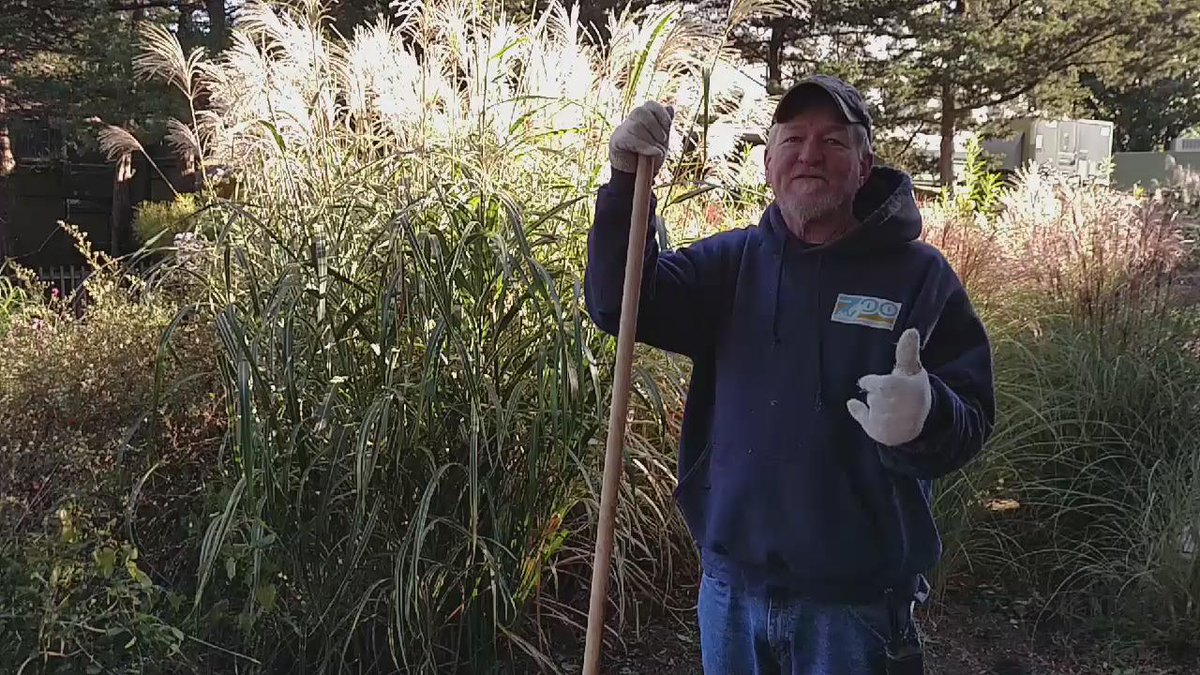 "Final thought from @TopekaZoo  horticulturist Rick Knight on green thumbs: ""Folklore."" https://t.co/XnfpKl6B8Q"