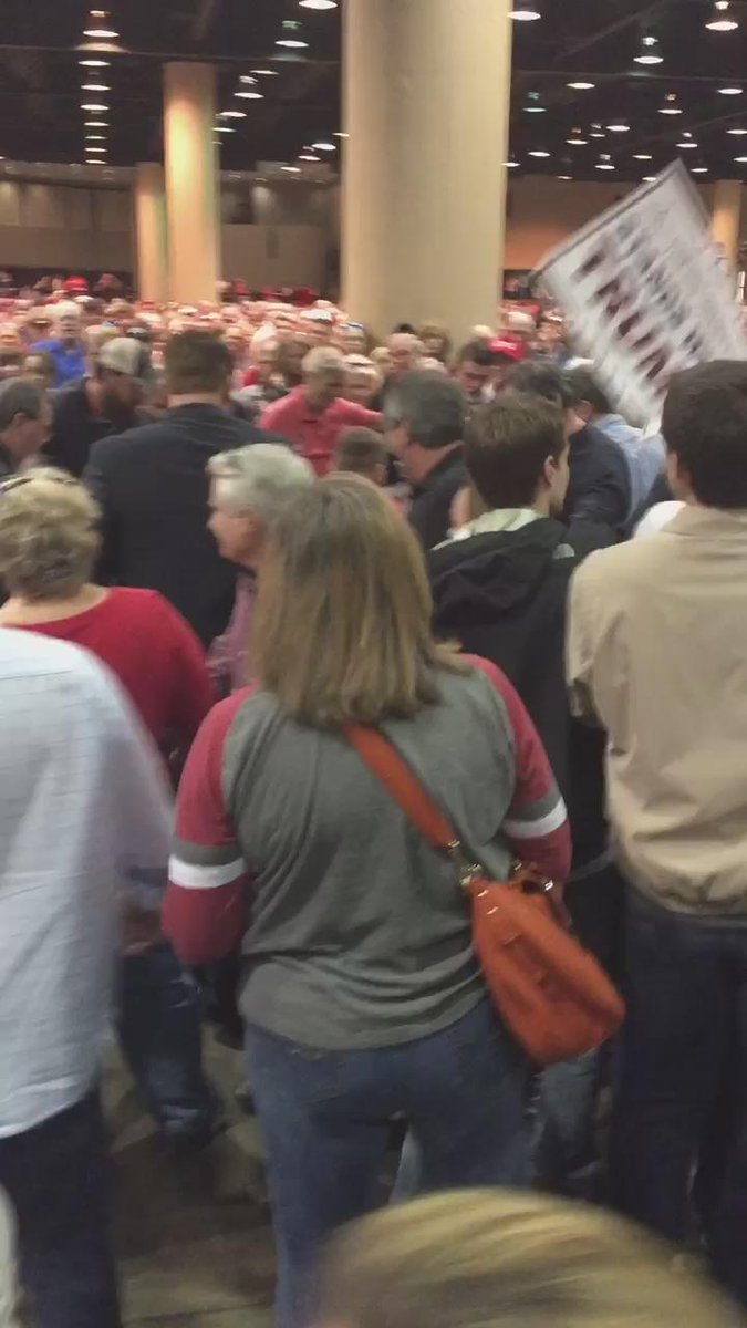 Donald Trump Rally Attendees Physically Assaulted a Black Lives Matter Protester in Alabama
