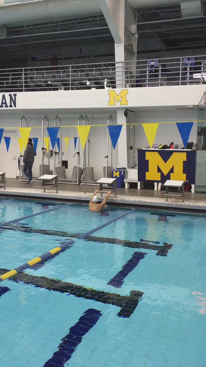 Backstroke start ☻ #arena #swimming https://t.co/d4v1rpNTgj