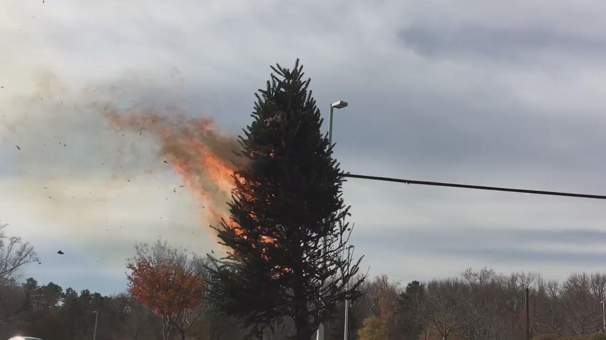 MT @BrianFox46: @cpcc & @CharlotteFD demonstrated how quickly a Christmas tree can go up in flames. https://t.co/ZBt0nHFKB2