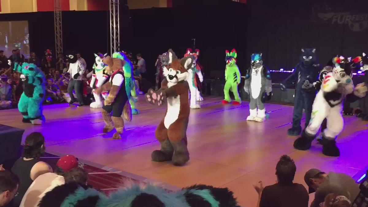 Quick video from the #furfest dance group! https://t.co/UcE9eDrjgf