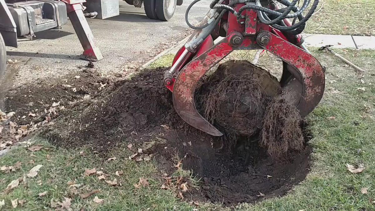 Look at that precision! 200lb sugar Maple successfully loaded into the hole #topekatweetalong https://t.co/InJtom47xe