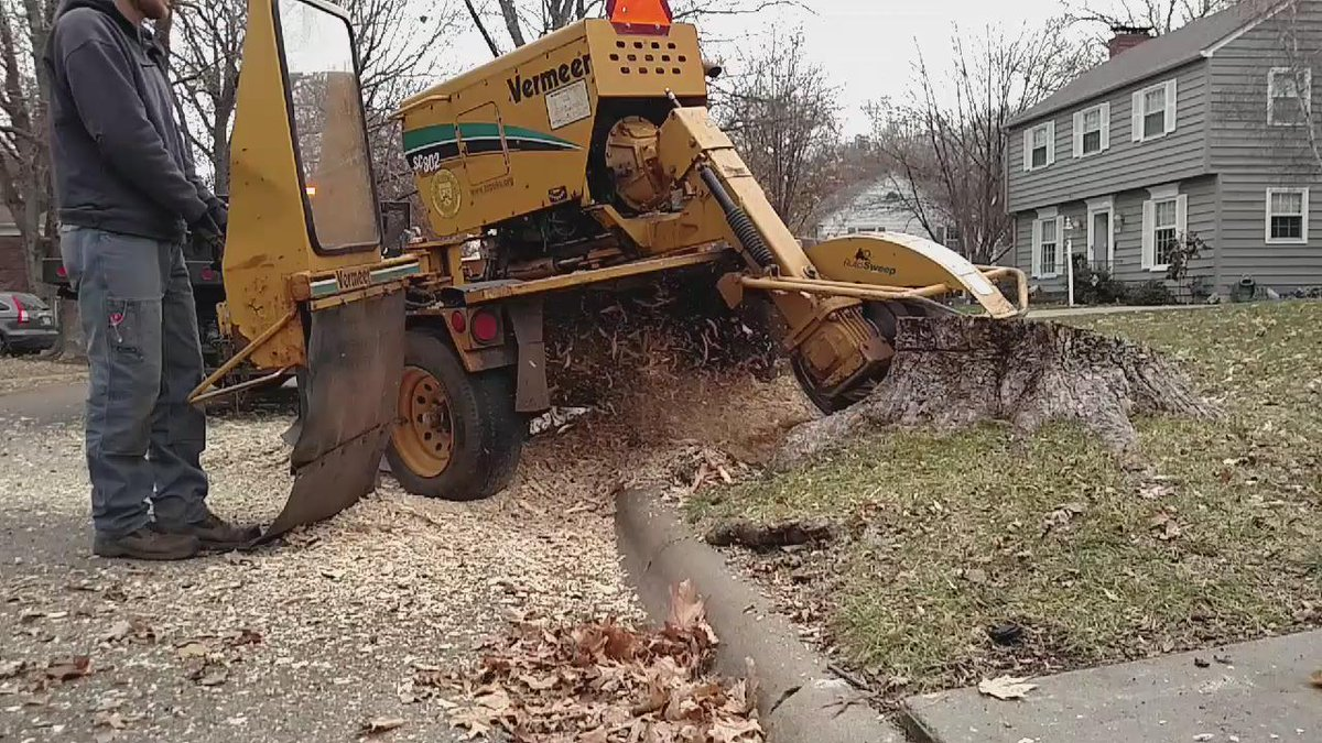 Tenbrink making sweeps on the stump #dailygrind #grindingaway #topekatweetalong https://t.co/Qf8nMZF86p